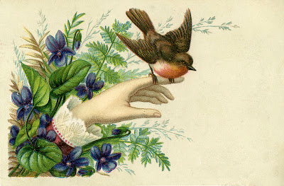 Bird-Hand-Victorian-GraphicsFairy